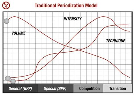 A Simple Guide to Periodization for Strength Training