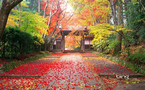 Autumn in Japan Wallpapers   HD Wallpapers   ID #10405