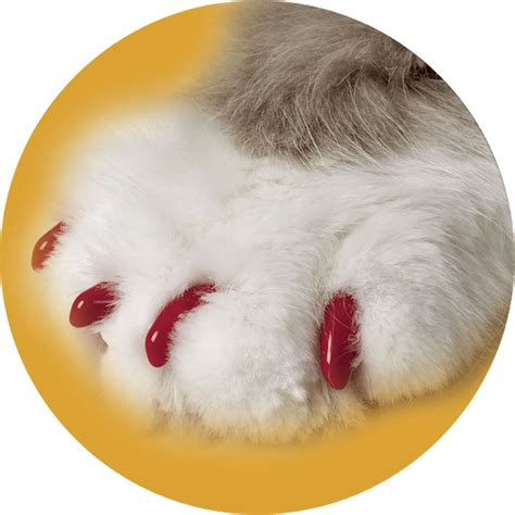 Soft Claws Red Cat Nail Caps   Petco