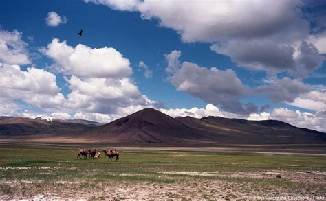 Interesting facts about the Gobi Desert | Just Fun Facts