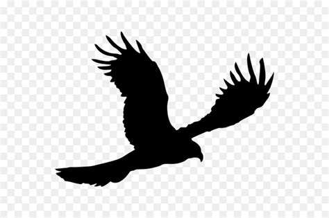 Download High Quality american eagle logo silhouette